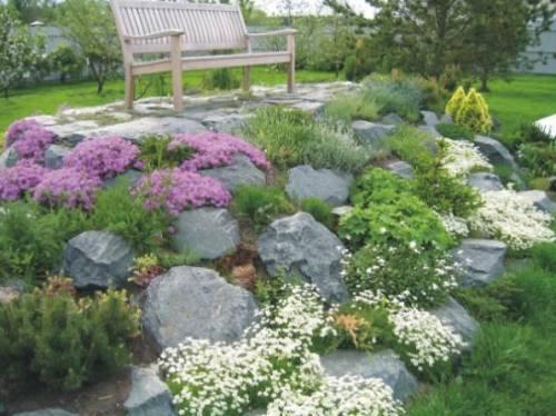 Проект клумбы проект клумбы садовые